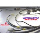 "Wireworx Honda Civic EK ""WireTuck-In-A-Box"" in Raychem"
